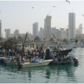 "Development of Coastal Harbours ""Nikas"" Kuwait"