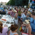 Yachting Consumers' Spending Habits